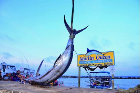 Marlin Queen